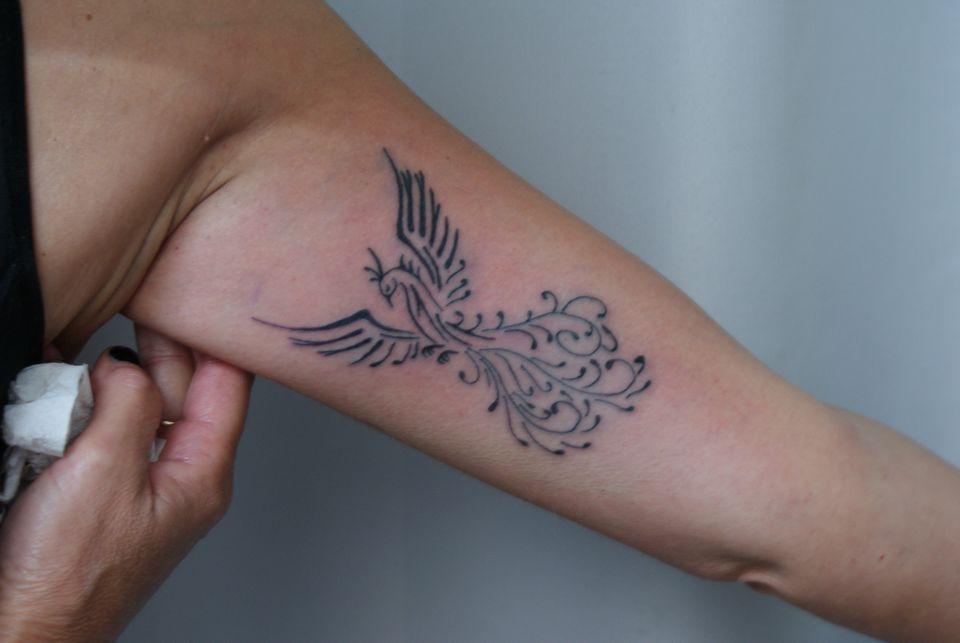Tattoo volution serge tatoueur pierceur depuis plus de 20 ans sur perpignan - Tatouage phoenix bras ...