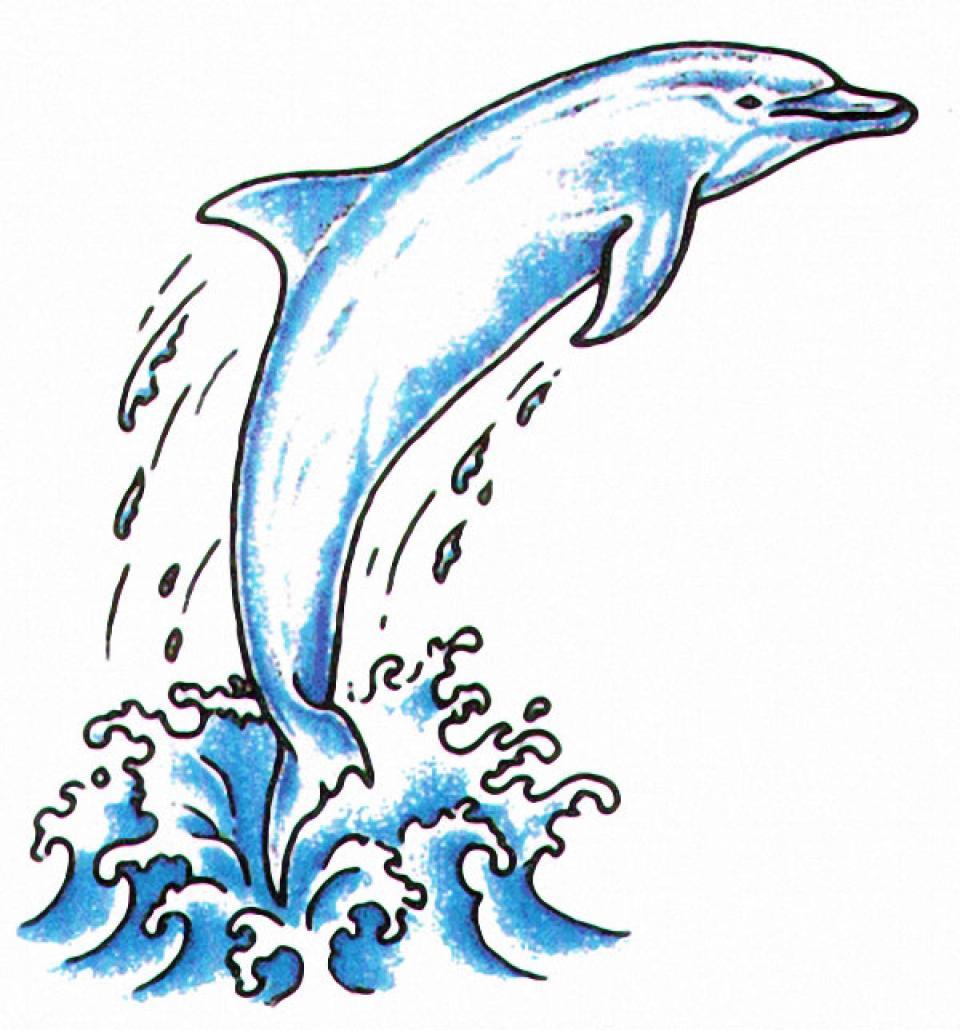 Tattoo volution serge tatoueur pierceur depuis plus de 20 ans sur perpignan - Dessin a imprimer de dauphin ...